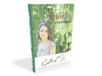 Ebookcover3D
